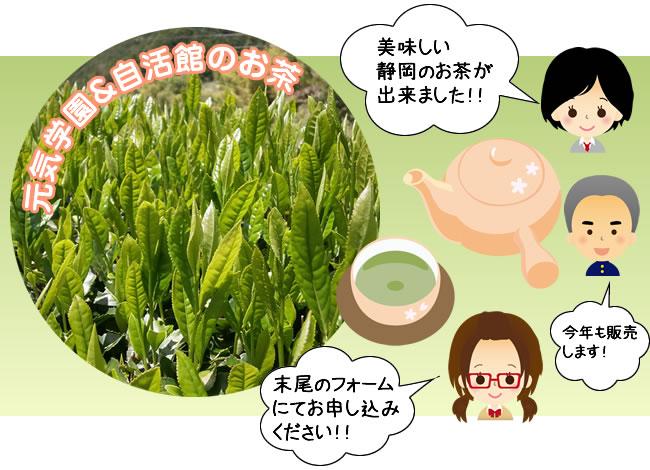 美味しい 静岡のお茶が 出来ました!!